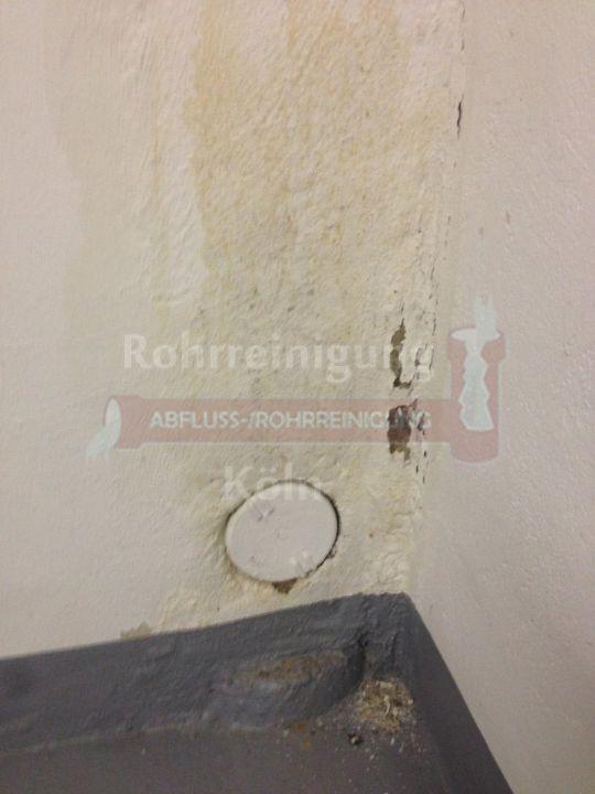 Awesome Feuchtigkeit An Der Wand Contemporary Kosherelsalvador Com